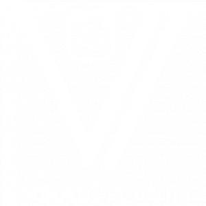 VIRAL GROWTH SOCIAL MEDIA MARKETING
